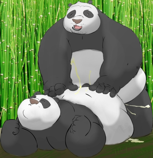 in kung kai fu panda Dr. girlfriend